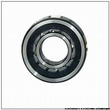 100 mm x 120 mm x 30 mm  ISO RNAO100x120x30 roulements à rouleaux cylindriques