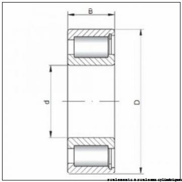 35 mm x 72 mm x 17 mm  ISO NP207 roulements à rouleaux cylindriques