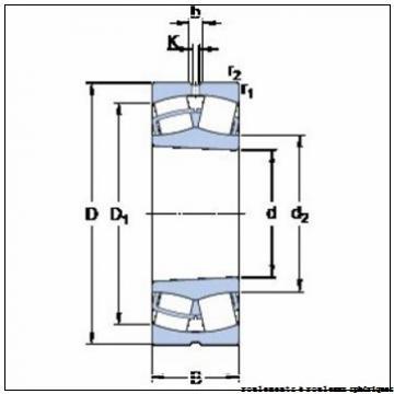 6,35 mm x 27,432 mm x 6,35 mm  NMB ARR4FFN-C roulements à rouleaux sphériques
