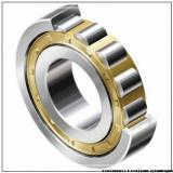 Toyana RNAO6x13x8 roulements à rouleaux cylindriques